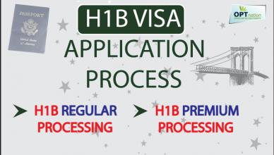 nz visa application processing time