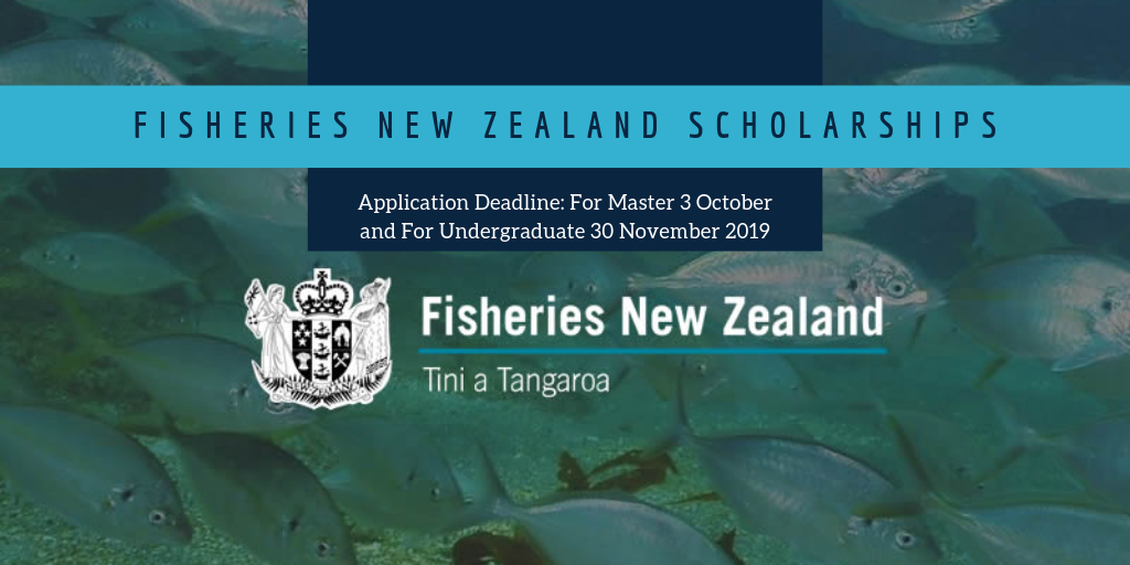 undergraduate scholarship application auckland