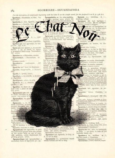 noir dictionary