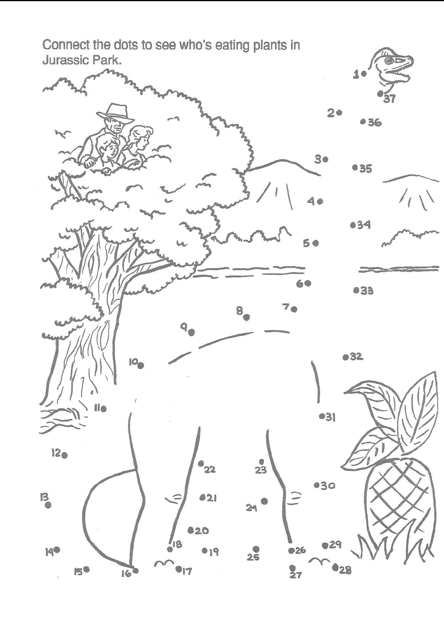 whale rider novel pdf