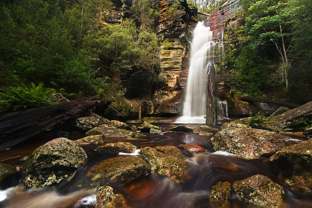 tasmania guide