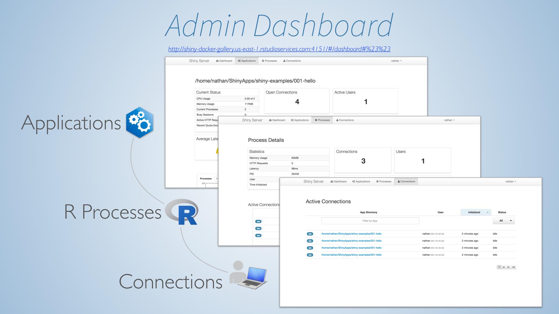 shiny application load data
