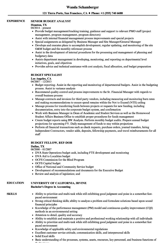 sample non profit treasurer job description