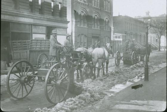 plow horse urban dictionary