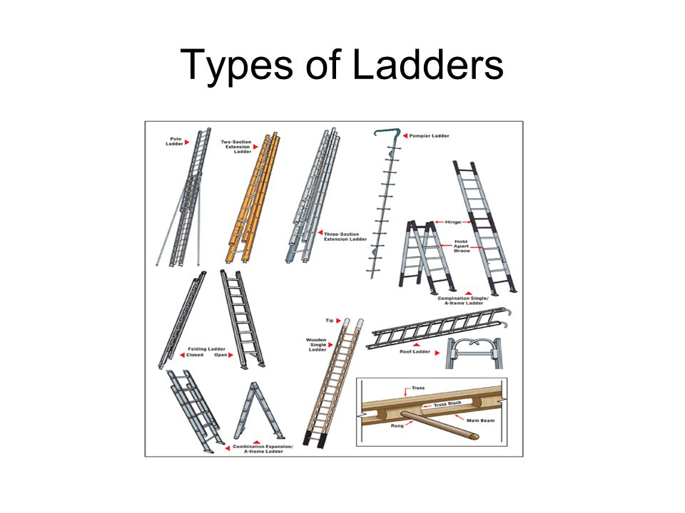 types of ladder pdf