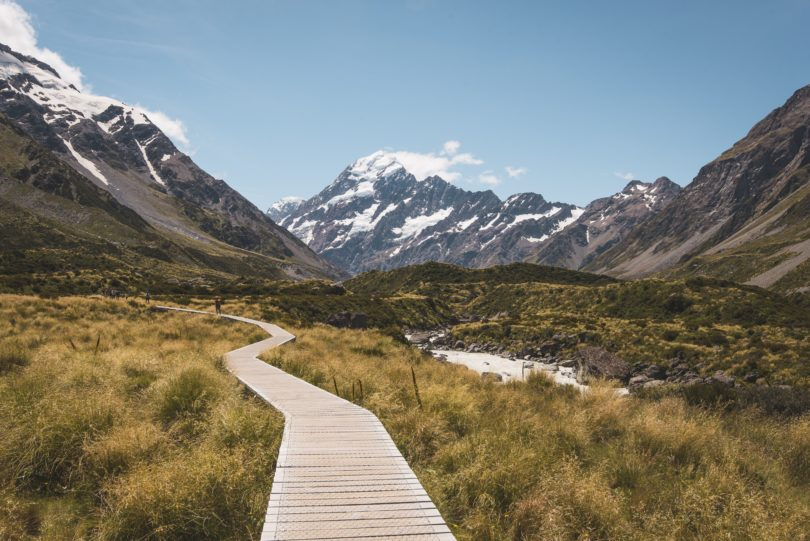 new zealand domeatic leave guide