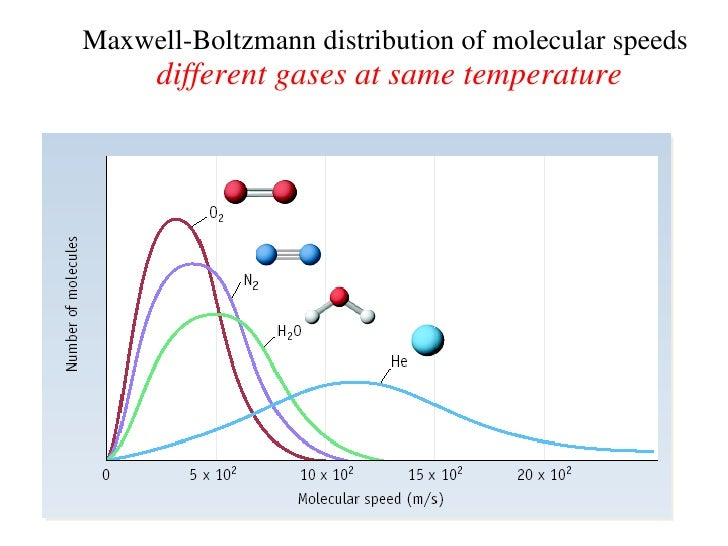 maxwell distribution of molecular velocities derivation pdf