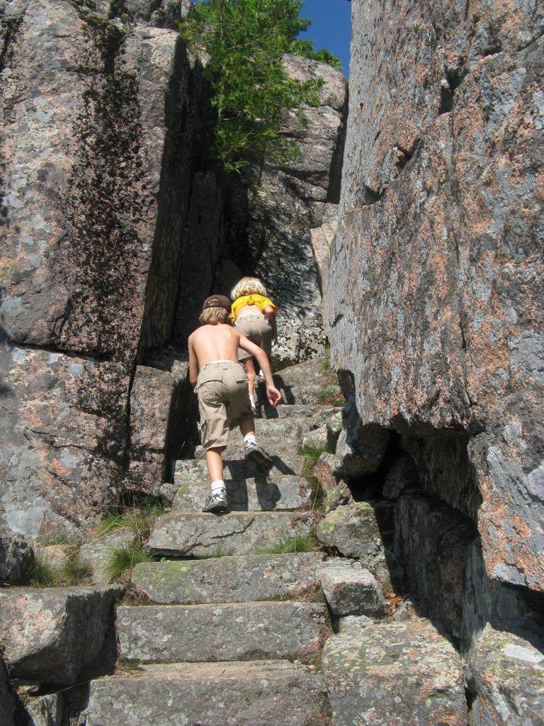 mountain guide companies