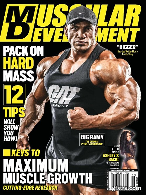 muscular development magazine pdf