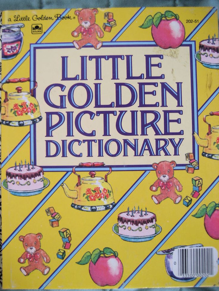 my little picture dictionary book
