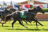 nz racing form guide