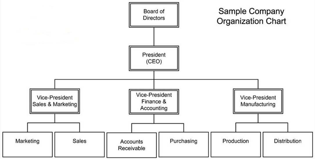 sample of an organisational business