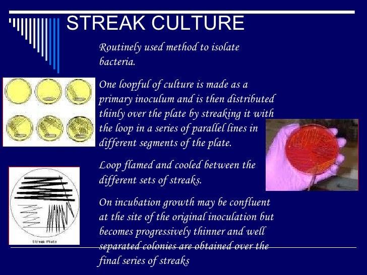 streak plate method pdf
