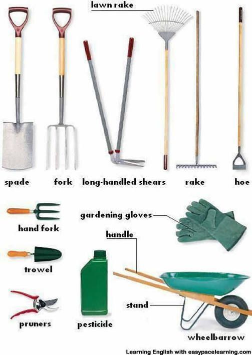 tool dictionary picture