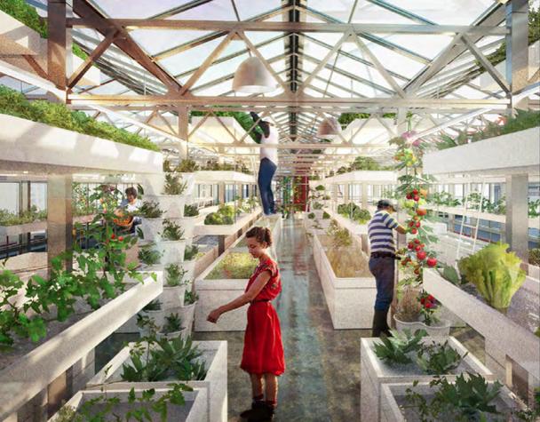 urban agriculture techniques pdf
