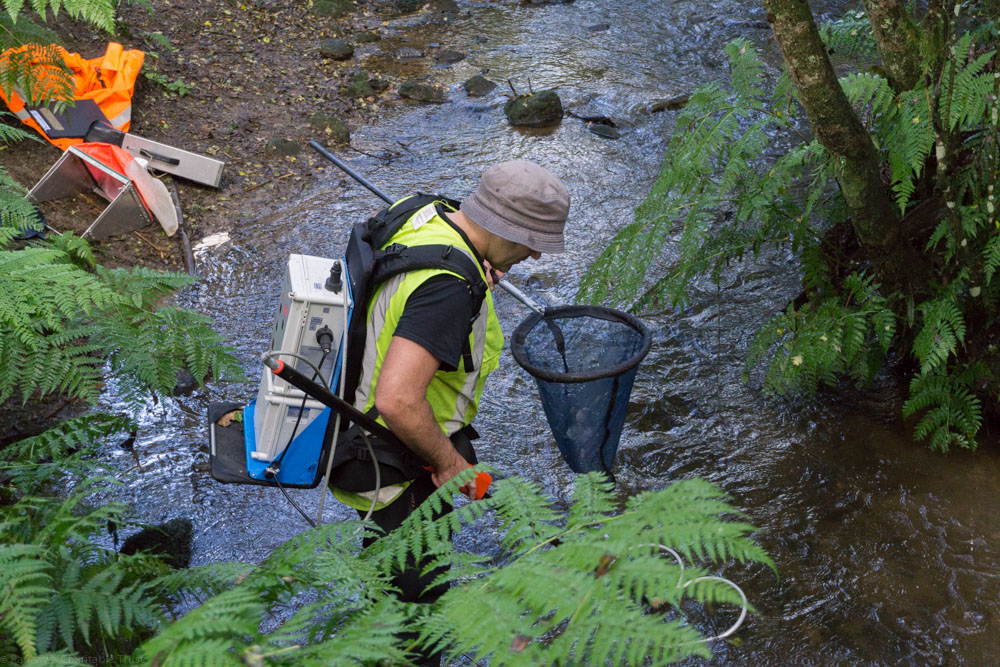 waikato regional council application for consent waterways